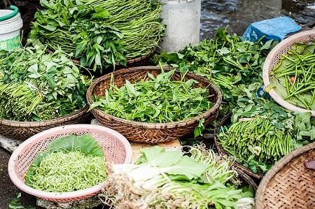 Plants Ayurveda - Ayurveda