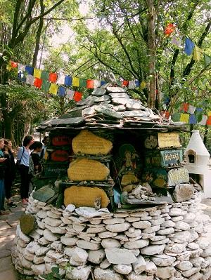 Norbolinga Institute Visit by Yoga Retreat Mantra Yoga School Participants Dharamsala - Retreats