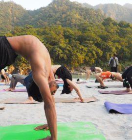 Yoga Teacher Training Rishikesh